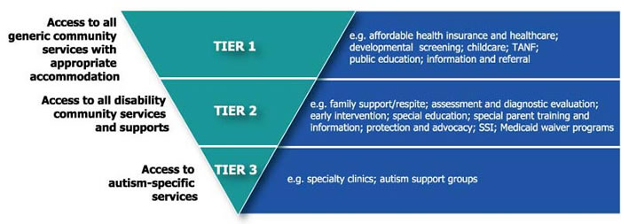 Model which assures that individuals with ASD have access to the broad range of community services, including those available to all individuals, to individuals with disabilities and chronic conditions, and to services that are uniquely required to address ASD