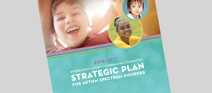 IACC Strategic Plan 2017 Cover